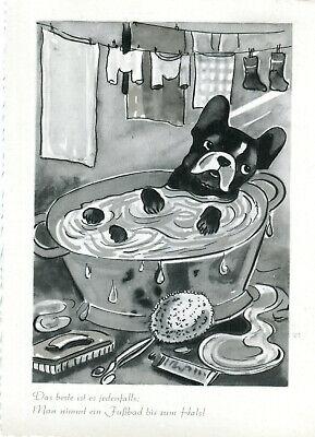 In Der Badewanne (AK Hund in der Badewanne 1978 Bremerhaven Festwoche Sonderstempel A_230)