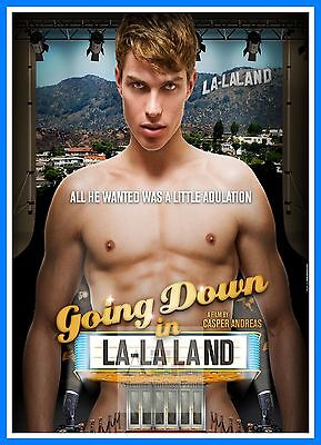 Going Down In La La Land   Gay Themed Movie Posters Vintage Cinema ()