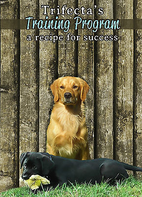 Puppy and Dog Training DVD: a video journey  to an obedient dog