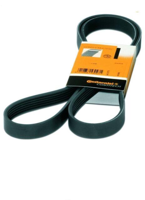 Conti V-Ribbed Belt FORD TRANSIT MONDEO 3 III 2.0-2.2 DI / TDdi / TDCi + 16V