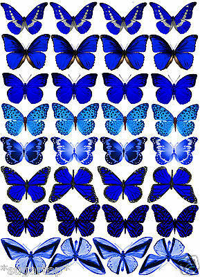32 x ROYAL BLUE Butterflies Mixed Designs Edible Decorations Cup Cake Toppers (Royal Blue Cupcakes)