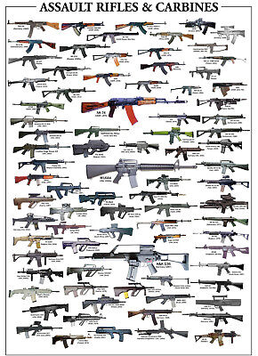 ASSAULT RIFLES & CARBINES GLOSSY POSTER PICTURE PHOTO GUNS WEAPONS AK47 -