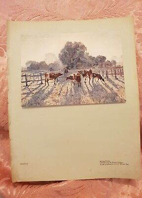 Spring Frosts - Vintage Tipped-In Book Print