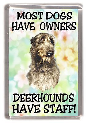 "Deerhound Dog Fridge Magnet ""Most Dogs Have Owners Deerhounds Have Staff"""