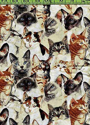 Realistic Cats cotton fabric fat quarter FQ -