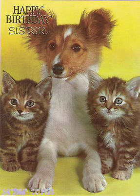 Vintage 1970's Happy Birthday Sister Greeting Card ~ Cute Shetland Terrier Puppy