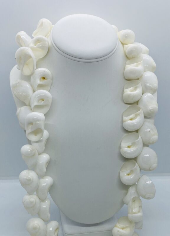 Antique Impressive Polished Whole White Snail Shell African Currency Necklace