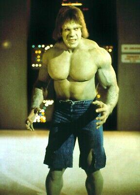 The Incredible Hulk - TV SHOW PHOTO #53 - LOU FERRIGNO