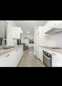 Rented - GRANNY FLAT FOR RENT IN ASPLEY - READY TO RENT ASAP