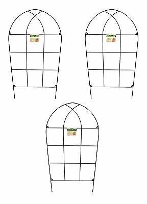 Gothic Metal Garden Trellises 150cm Climbing Plant Support Trellis Set of 3