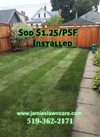 Sod Replacment