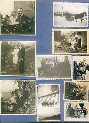 25 alte Foto a. Fotoalbum Pferd Kutsche Schlitten Pferdeschlitten Landwirtschaft