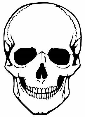 Skull Car Decal / Sticker