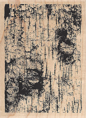 Birch Tree Background Wood Mounted Rubber Stamp IMPRESSION OBSESSION H9032 New