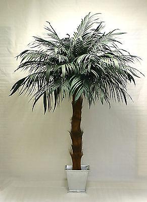 Arekapalme 200cm/220cm künstliche Palme Kunstpalmen Arecapalme Echtblattpalme