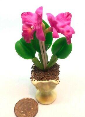 1:6 Escala Grande Rosa Arcilla Orquídea En Cerámica Maceta Muñecas Casa Flor