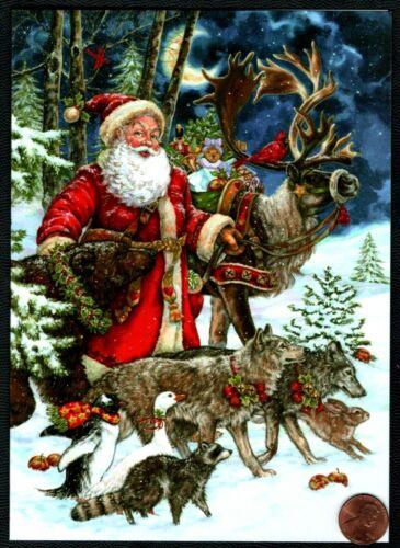 Christmas Santa Claus Reindeer Wolf Rabbit Raccoon - Christmas Greeting Card