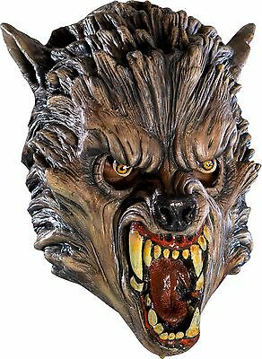 Wolf Latex Mask (Adult Werewolf Mask Full Overhead Latex Head Face Fangs Were Wolf Mens)