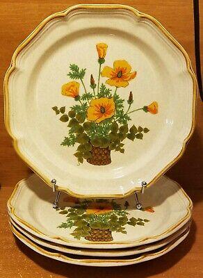 Garden Club Teller (Mikasa Garden Club PETUNIAS Dinner plate set of 4, 10 3/4