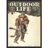 "1911 Philip Goodwin, Bear Hunter, antique, Rifle, Gun, Hunting,18""x13 art Print"