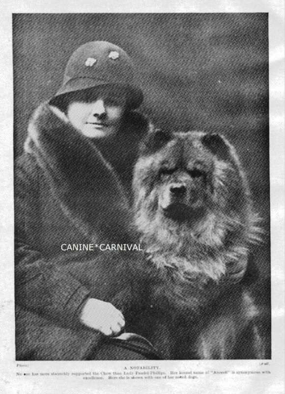 WOMAN WITH CHOW DOG 1934 ORIGINAL VINTAGE ART PHOTO PRINT ENGLAND