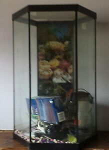 New used pet accessories in muskoka kijiji kijiji for Hexagon fish tank lid