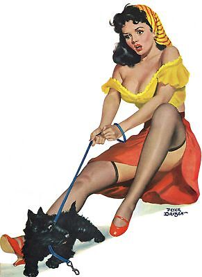 American Pinups: Flirt - Brunette Girl in Crop Top With Dog - Driben - 1951 Dr Dog Top