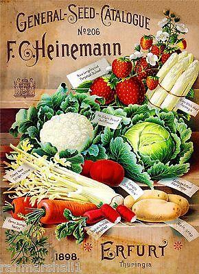 1898 Heinemann Vegetable Vintage Seed Packet Catalogue Advertisement Poster