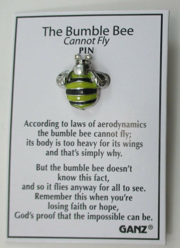 QQb Lucky Little Bumble bee cannot fly Pin lapel tack faith hope ganz bumblebee