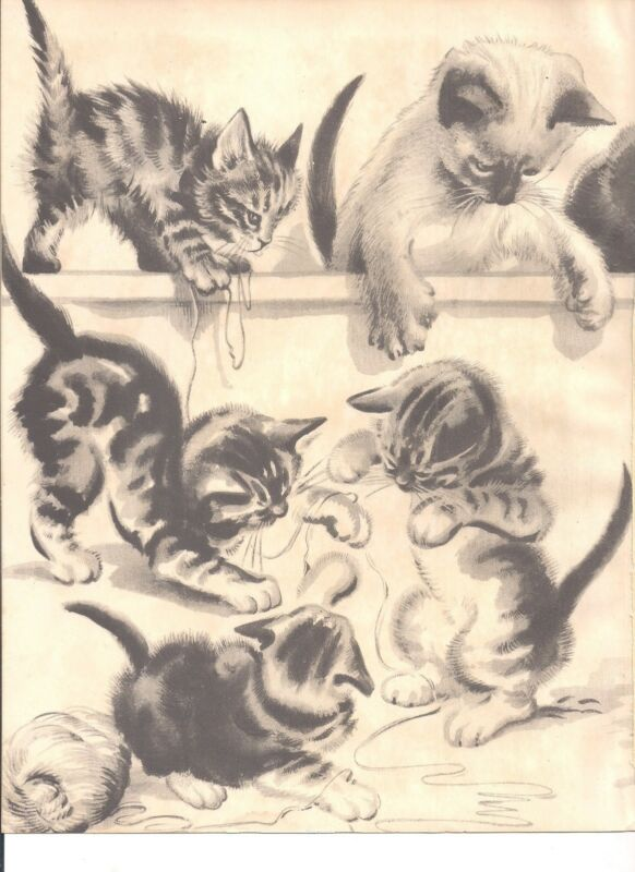 Cats Bunch of Felines Kittens 1930s CHILDRENS Vintage Art Print VETRINARIAN
