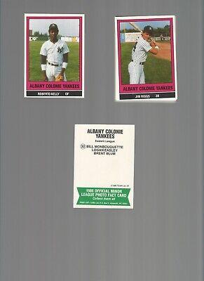 Albany-Colonie YANKEES 1986 Minor League TCMA 32 Card TEAM SET Roberto (Colonie Albany)