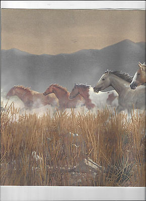 Horse Wallpaper Border - WALLPAPER BORDER RUNNING WILD HORSES HORSE COUNTRY MOUNTAIN STAMPEDE NEW ARRIVAL