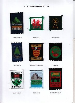 Boy Scout Badges from WALES x 9 inc Ext ABERGAVENNY