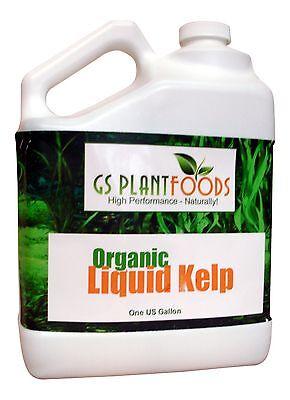 Liquid Kelp Organic Seaweed Fertilizer, 1 Gallon ...