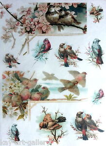 Rice Decoupage Paper / Decoupage Sheets  / Scrapbooking / Lovely Birds  1