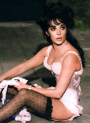 NATALIE WOOD THE GREAT RACE SEXY GARTER BELT AND BUSTIER PHOTO