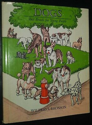 Dogs Best Breeds for Young People Wilfrid S Bronson Illustrated Childrens