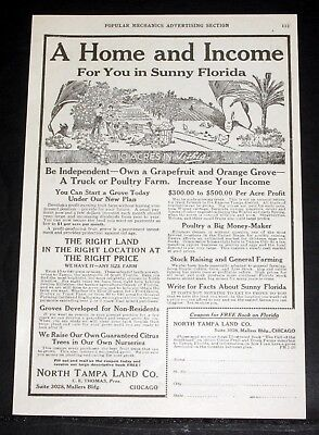 1920 OLD MAGAZINE PRINT AD, NORTH TAMPA LAND CO, HOME, INCOME IN SUNNY FLORIDA! ()