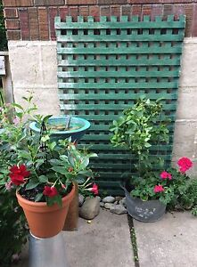 Vintage Green Lattice Planters with Plants and Water Feature