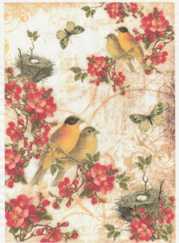 Rice Paper for Decoupage Scrapbook Craft Sheet Blossom with Birds