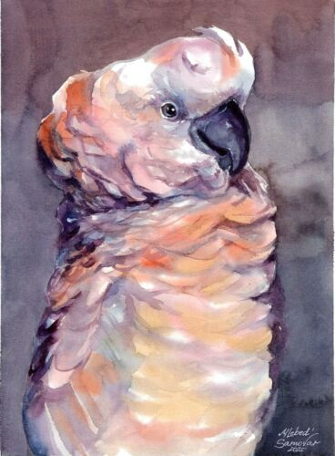 original drawing 18 x 24 cm 218LM art samovar watercolor bird parrot Signed 2020