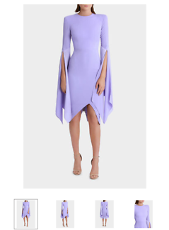 Wanted: Wanted!! Alex Perry  Cara Split Lady Dress Size 14