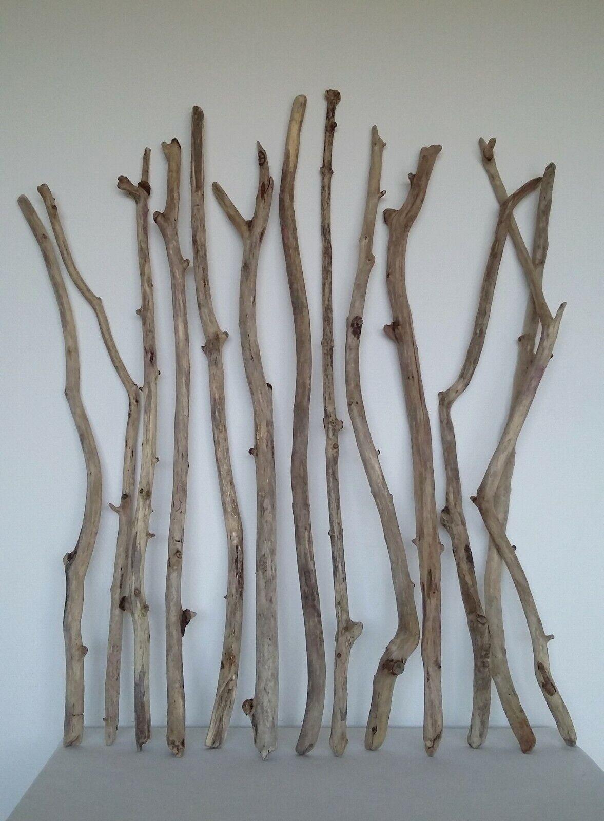 Treibholz Schwemmholz Driftwood 13 Äste Terrarium
