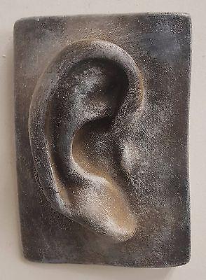 Michelangelo's David Ear Greek Roman Art Wall Plaques Sculpture
