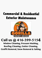 Gorrilla Property Services         gorillapropertyservices.com