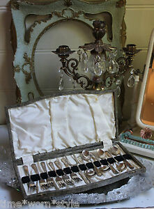 ANTIQUE VINTAGE CAKE FORK & SPOON SET SNAKESKIN CASE EPNS ENGLAND