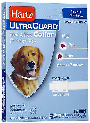 Hartz UltraGuard Flea & Tick Collar for Large Dogs, Water Resistant
