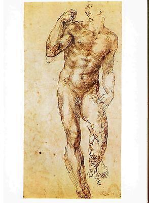 AK 152: Michelangelo, Studio di Nudo