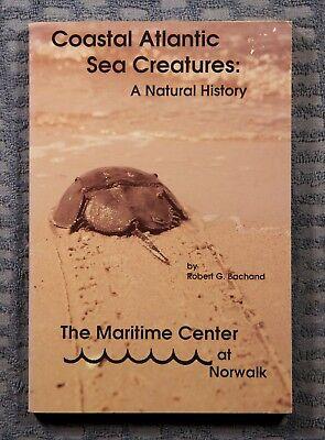 Coastal Atlantic Sea Creatures  A Natural History By Robert G  Bachand 1994 Pape