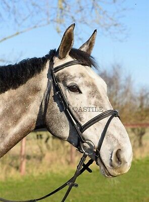 Leather Comfort Horse Bridle Padded Flash With Free Rubber Reins NEW DESIGN Leather Comfort Bridle